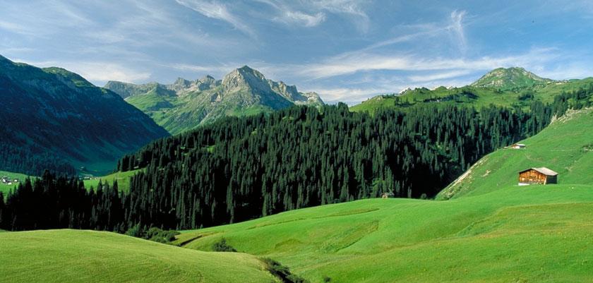 Austria_Lech-summer_Valley-forest-view.jpg